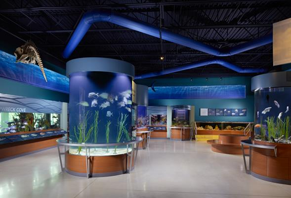 South Florida Science Center and Aquarium