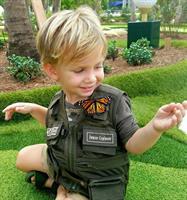 Gallery Image butterfly_golf.jpg
