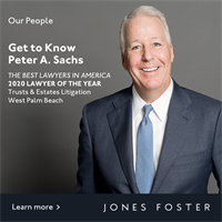 Get to Know Litigation Attorney Peter Sachs