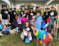 Jones Foster Sponsors Peggy Adams' 2020 Walk for the Animals