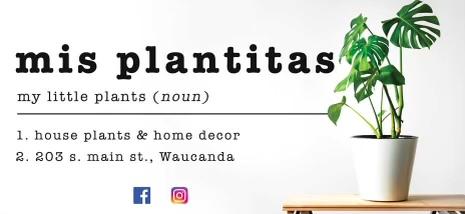 Mis Plantitas