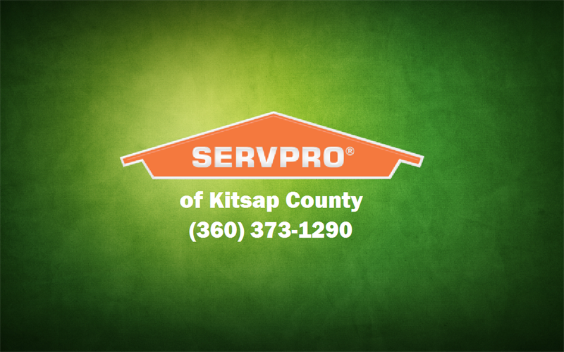 Gallery Image servpro_with_green_background.png