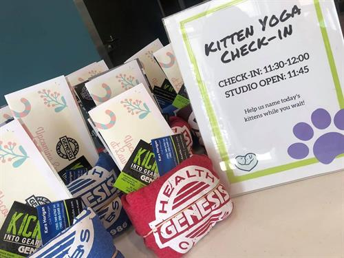 Kitten Yoga with Lawrence Humane Society Fundraiser