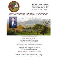 Business Connection Network LUNCHEON: State of the Chamber