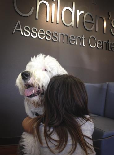 Mack, the Therapy Dog.