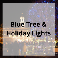 Blue Tree and Holiday Lights