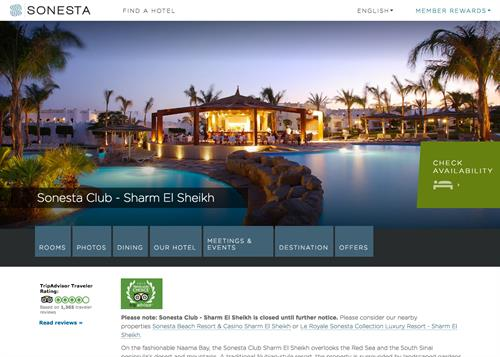 A true partner, Traktek works closely with Sonesta Resorts on their website, email marketing strategy and execution.