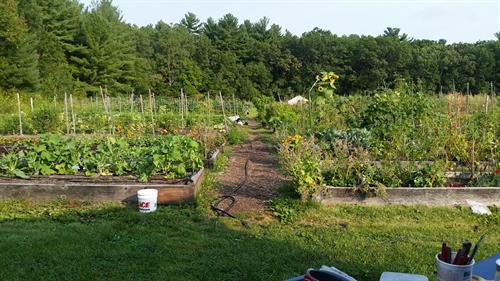 Full Farm View