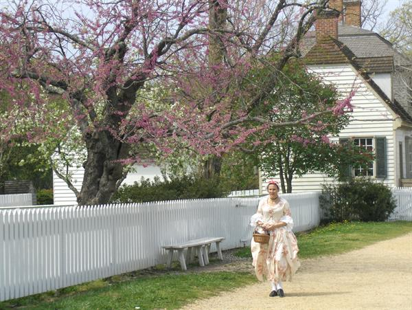 Abigail by Gail: A Colonial Experience