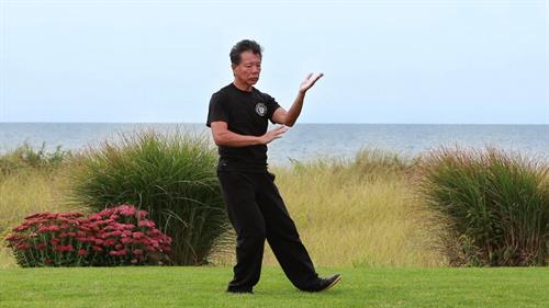 Master Calvin Chin performs the Tai Chi Paradigm form