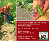 Newton Community Farm Fun in the Sun summer outdoor classes for kids