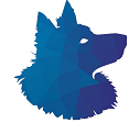 Shetland Financial, LLC