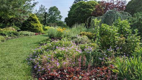 Bressingham Garden, Massachusetts Horticultural Society's The Gardens at Elm Bank