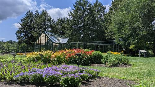 MHS Trial Garden