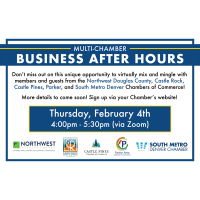 Multi Chamber Business After Hours & Virtual Networking Event