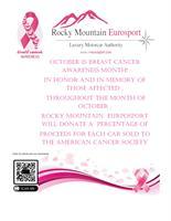 Rocky Mountain Eurosport - Parker
