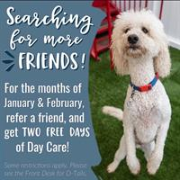 Camp Bow Wow Dog Day Care, Boarding & Grooming Services - Hutto