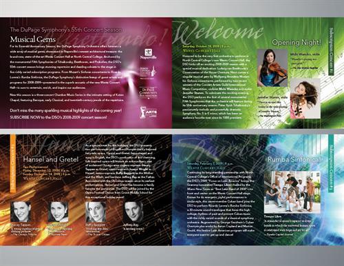 DuPage Symphony Orchestra 2008/2009 Season Brochure