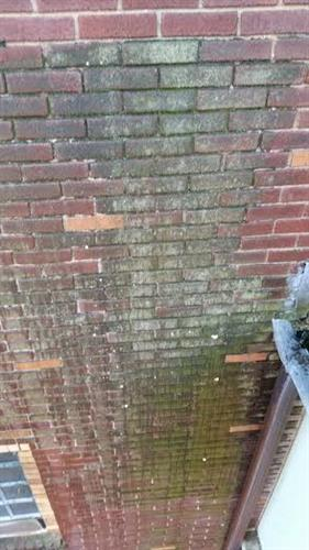 Exterior masonry cleaning- Before