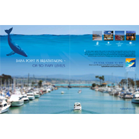 Resorts of Dana Point, Branding Ad