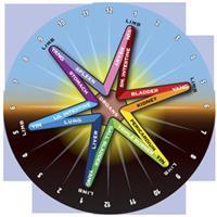 24 hours Meridian Qi circles