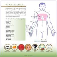 Gallery Image pericardium_meridian_poster_FINAL-page-001.jpg