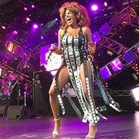 Tina Turner Tribute Brings Glitz & Glamour to Sanford