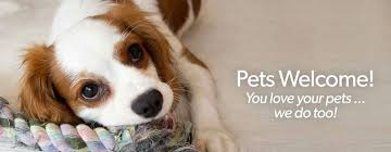 We are pet friendly and our pet fees are less expensive than boarding your furry family member!