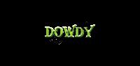 Dowdy Insurance