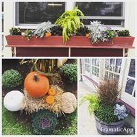 Local Business Seasonal Display: Fall