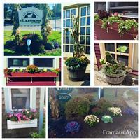 Business Gardening Displays