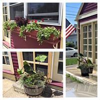 Local Business Seasonal Display: Summer
