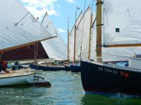 Catboat Gathering