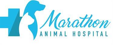 Marathon Animal Hospital