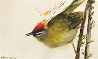 Birds in Art 2019: Taking Flight at the Woodson Art Museum