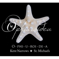 Ophiuroidea ''The O'' - St. Michaels