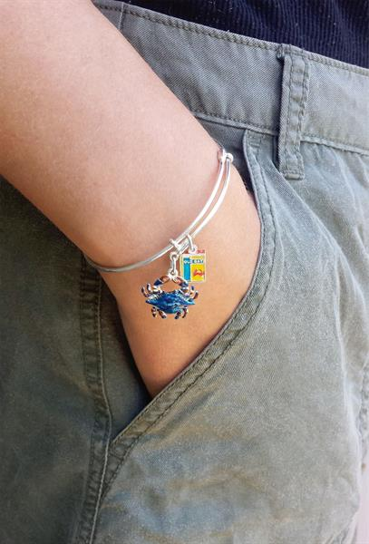 Sterling silver and enamel blue crab and seafood spice charm bracelet.