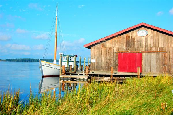 CBMM's Small Boat shed and living shoreline