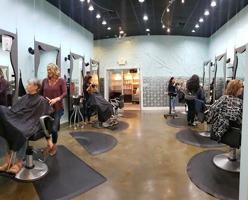 The Full Service Salon
