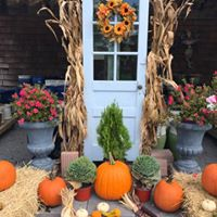 We love fall and are open all year round!