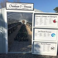 Green House 3 is full of perennials and we have a perennial specialist on site to help you with any questions!