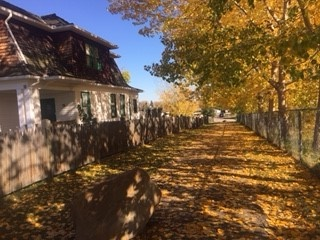 Fall at the Multicentre
