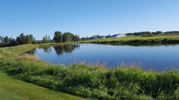 BEAUTIFUL PONDS WITH FAIRWAYS AND LUSH GREENS FOR GOLFING FUN!