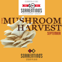 25th Annual Mushroom Harvest