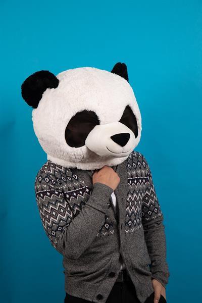 A thoughtful panda
