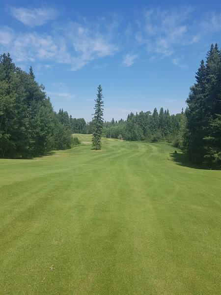 Hole #12 maybe Alberta's most challenging par 5