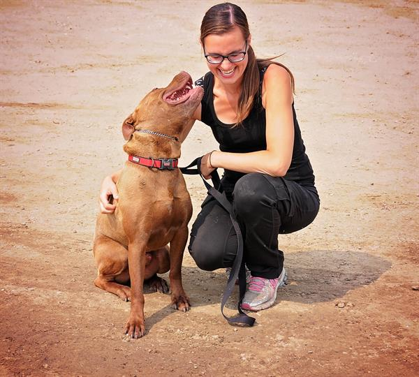 Private dog training.