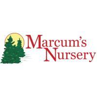Love on Local at Marcum's Nursery