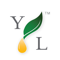 Young Living Essential Oils- Laurie Jean Harrington - Oviedo