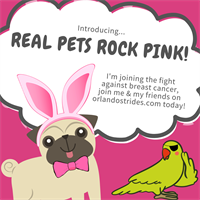 Real Pets Rock Pink-Virtual Fundraiser for Making Strides of Orlando